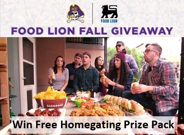 Food Lion Homegate Sweepstakes
