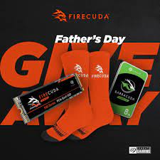 PLE Computers Father's Day Giveaway
